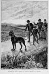 Laurie_Roux_AxelEbersen1891_Sporhund